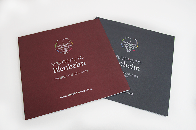 Blenheim School Prospectus Design